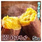 さつまいも 熊本産 紅はるか(5kg)訳あり 徳用 ご家庭用 現在発送中 2S〜2L サツマイモ べにはるか 焼き芋 甘い 蜜芋 薩摩芋 野菜 国華園