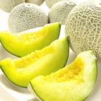 メロン 山形産 ご家庭用 アンデスメロン(約4kg)3〜6玉 青肉 めろん melon フルーツ 国華園