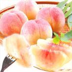 桃 和歌山産 あら川の桃(7kg)3.5kg×2箱 ご家庭用 品種おまかせ もも ピーチ フルーツ 国華園