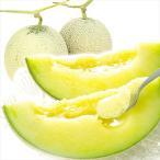 メロン 九州産 アールスメロン 2玉1箱 ご家庭用 フルーツ 果物 食品 国華園