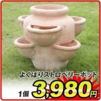 イチゴ栽培に適した鉢,テラコッタ,素焼鉢,国華園