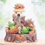 鉢 植木鉢 ポリ製 多肉植物 寄せ植え かわいい プチオアシス・キノコのおうち 1個 女性 プレゼント