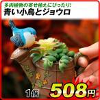 鉢 植木鉢 ポリ製 多肉植物 寄せ植え かわいい プチオアシス・青い鳥とジョウロ 1個