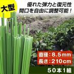園芸支柱 支柱 大型グラスファイバー支柱 長さ210cm 50本1組 ≪代引不可≫
