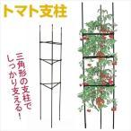園芸支柱 支柱 トマト支柱 3個1組