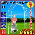 バラアーチ 鉄製アーチ・ホワイトアイビー 1個 幅150・奥行45・高さ240 ガーデンアーチ ローズアーチ ガーデニング