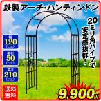 バラアーチ 鉄製アーチ・ハンティンドン 1個 ガーデンアーチ ローズアーチ ガーデニング アイアン 幅120・奥行50・高さ210