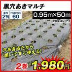 農業用マルチ 黒穴あきマルチ 2列60(0.95×50m) 2巻1組