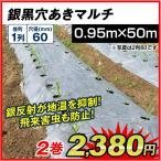 農業用マルチ 銀黒穴あきマルチ 1列60(0.95×50m) 2巻1組