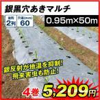 農業用マルチ 銀黒穴あきマルチ 2列60(0.95×50m) 4巻1組