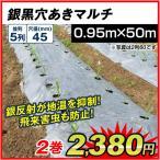 農業用マルチ 銀黒穴あきマルチ 5列45(0.95×50m) 2巻1組