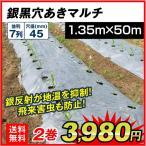 農業用マルチ 銀黒穴あきマルチ 7列45(1.35×50m) 2巻1組
