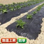 農業用マルチ 黒マルチ(厚手) 1.8×50m 1巻1組