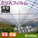 ビニール、POフィルム 温室フィルム EVAフィルム厚型 8m×30m 1巻 在庫一掃セール