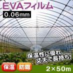 ビニール、POフィルム 温室フィルム EVAフィルム(0.06mm) 2m×50m 1巻 在庫一掃セール