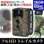 防犯カメラ トレイルカメラ (SDカード16GB付) 1個 送料無料 屋外 屋内 防水 防塵 乾電池 800万画素 フルHD 熱感知 赤外線センサー micro SDカード 録画 1080P
