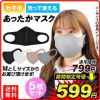 あったかマスク 5枚セット マスク 洗える 飛沫防止 国華園