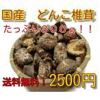 干し椎茸 国産 中玉どんこ椎茸 増量お買い得品  送料無料 干ししいたけ 干しシイタケ