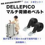 Dellepico 荷締めベルト 荷締バンド 多用途 固定ベルト 固定バンド 荷物 固定 地震対策グッズ 幅25mm 長さ2m 2本セット (シルバー)