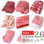 熟成肉300g 上カルビ300g ハラミ300g 焼肉用黒豚バラ500g 焼肉用特上ロース300g タンスライス300g ハツ300g マルチョウ300g 合計2.6kg(kagoshimabeef)