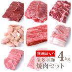 熟成肉500g 上カルビ500g ハラミ500g 焼肉用黒豚バラ500g 焼肉用特上ロース500g タンスライス500g ハツ500g マルチョウ500g 合計4kg(kagoshimabeef)