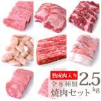 熟成肉300g 焼肉用特上ロース300g 特上カルビ300g ハラミ300g 上カルビ300g マルチョウ300g 特上タン300g 焼肉用黒豚バラ400g 2.5kg(kagoshimabeef)