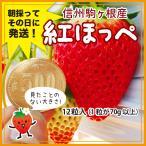 冬ギフト/贈答用/2,3月限定/1粒70g以上の特大いちご・紅ほっぺプラチナプレミアム12粒