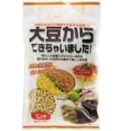 フジサワ 大豆からできちゃいました ミンチタイプ 110g×10袋 低カロリー ノンフライ ひき肉