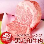 ギフト 鳥取和牛 (黒毛和牛肉) 鳥取県産 サーロイン ロース1キロブロック黒毛牛肉 送料無料