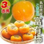 柿 富有柿 最高級 赤秀 ご進物用 鳥取県産 柿 3kg(14玉前後) かき 送料無料