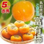 柿 富有柿 最高級 ご進物用 赤秀 鳥取県産 柿 5kg(18?24玉前後) かき 送料無料