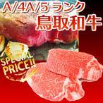 ギフト 鳥取和牛 鳥取県産 国産黒毛和牛肉 最高級 ヒレステーキブロック 400g 送料無料