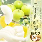 鳥取県産 (訳あり優品) 二十世紀梨 5kg(L-3L12-18個前後 )梨 ご自宅用(訳あり)梨 2箱以上お買い上げでもう1箱分5kgプレゼント 送料無料
