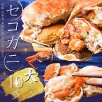 【ご予約】セコガニ せこがに 山陰沖産 親がに 大サイズ10枚セット(150g?200g) セイコガニ 送料無料