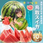鳥取スイカ  鳥取県北栄町産(旧大栄町)すいか ご自宅用すいか(訳あり ご自宅用)超特大10kg以上 送料無料