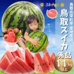 鳥取産 スイカ 鳥取県北栄町産(旧大栄町) 西瓜 すいか 超特大10-16キロ(10−16kgご贈答用 秀品) 送料無料