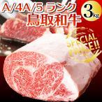 ギフト 鳥取和牛 (黒毛和牛肉) 鳥取県産 サーロイン ロースブロック肉 3キロブロック 送料無料