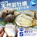 天然岩牡蠣 (活) 牡蠣 200g-300g前後 5個セット 鳥取産 岩牡蠣 カキ 刺身用 (岩ガキ/岩がき) 送料無料