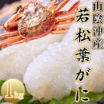【ご予約】若松葉ガニ 約1kg(活生)訳あり カニ かに 若松葉がに 300g以上(3ー4枚 )刺身用 送料無料
