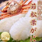 【ご予約】若松葉ガニ 約5kg(活生)訳あり カニ かに 若松葉がに食べ放題ファミリーセット(12ー15枚前後)刺身用 送料無料