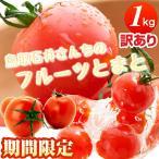フルーツトマト 訳あり(大きさ不揃い)鳥取産 石井さんちの甘くて美味しいトマト1kg詰め 大自然の安心 フルーツとまと