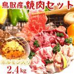 鳥取県産 焼肉セット 2.4kg (6〜10人前) ホルモン 牛肉 豚肉 鶏肉 バーベキュー BBQ ファミリーセット たっぷり2,4キロ 送料無料