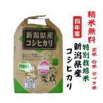 令和2年 コシヒカリ 新潟県産 特別栽培米 玄米5Kg 白米・7分づき・5分づき・3分づき・玄米・精米無料