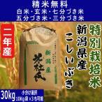 新米29年産 【特別栽培米】新潟県産こしいぶき 玄米30Kg 【白米・7分づき・5分づき・3分づき・玄米から精米選択可能】