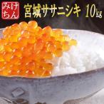 米 お米 10kg 宮城県産 ササニシキ 28年産 送料無料