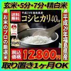 新米 米 お米 40kg 福島県産 コシヒカリ 29年産 送料無料