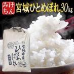 ■新米■ 米 お米 30kg 宮城県産 ひとめぼれ 令和元年産 送料無料