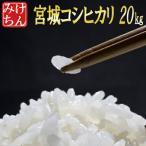 米 お米 20kg 宮城県産コシヒカリ 29年産 送料無料