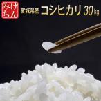 米 お米 30kg 宮城県産 コシヒカリ 令和2年産 送料無料