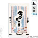 米袋 ポリ マイクロドット キヌヒカリ 和心 5kg用 100枚セット PD-0028 [改]